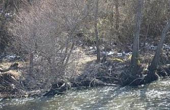 Yeşilırmak'ta bulunan ceset 2 aydır kayıp Hidayet Temizel'e ait çıktı