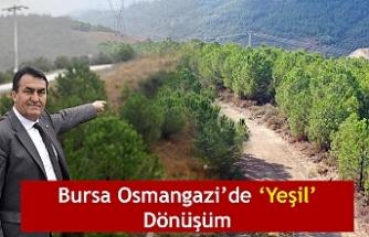 Bursa Osmangazi'de 'Yeşil' Dönüşüm