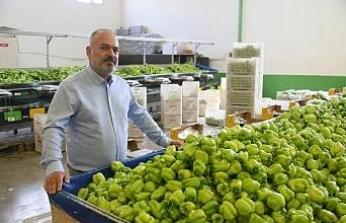 Batı Akdeniz ihracatı ilk kez 2 milyar doları aştı