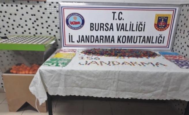 Bursa'da jandarmadan kumar baskını