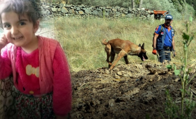 3 gündür bulunamayan Evrim'i, Eylül'ü bulan 'Abrek' de arıyor