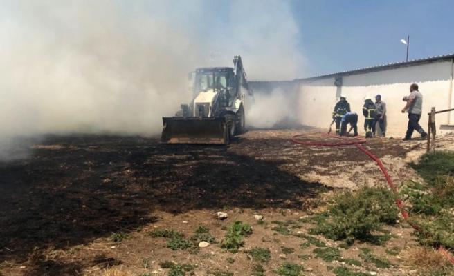 Karacabey'de yangın çıktı hayvanlar telef oldu
