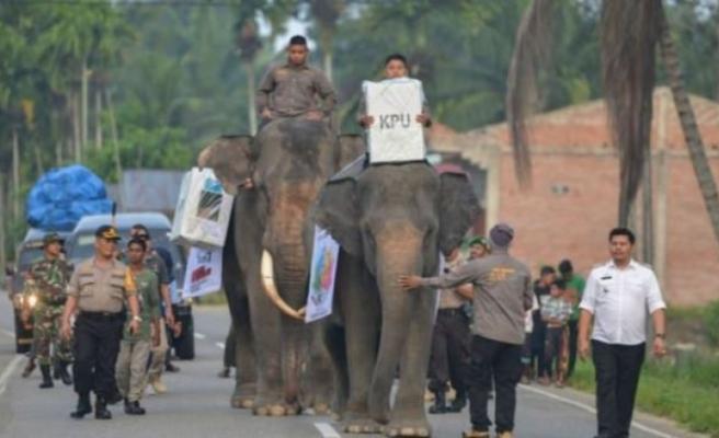 Fille seçim sandığı taşıdılar!