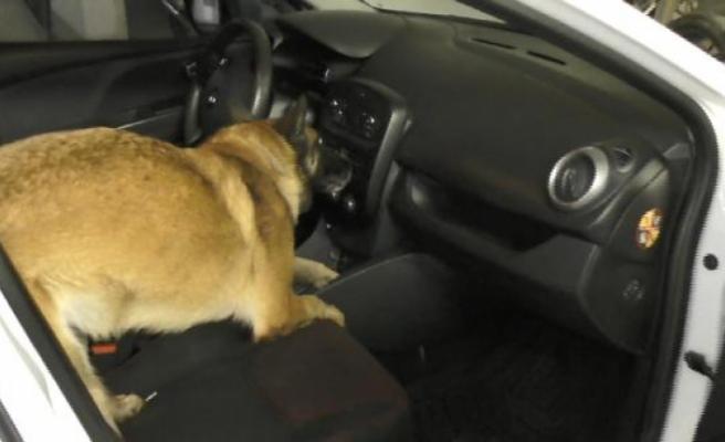Bursa'da otomobil teybine gizlenen uyuşturucuyu narkotik köpeği buldu