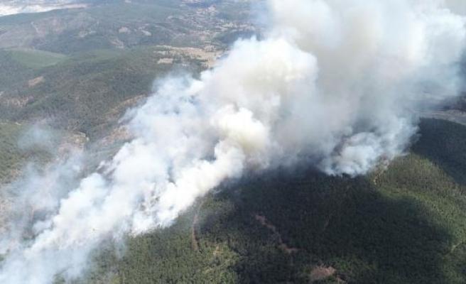 Orhaneli'deki orman yangınına 3 gözaltı