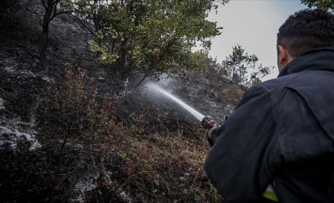 Orman yangınlarına 'gönüllü' tedbir