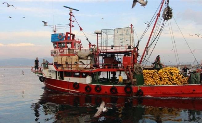 Balıkçılar palamut ve lüfere hasret