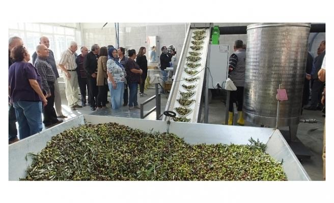 Balıkesir'de 60 yıllık zeytinyağı fabrikası devlet desteği ile yenilendi
