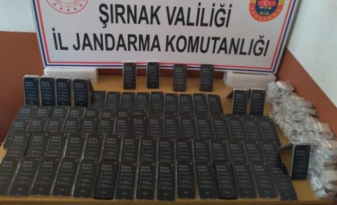 Şırnak'ta 'kaçakçılık' operasyonu!