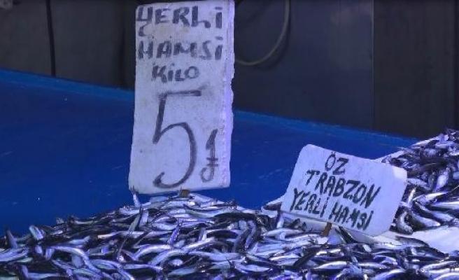 Trabzonlu balıkçılardan 'hamsi daveti'
