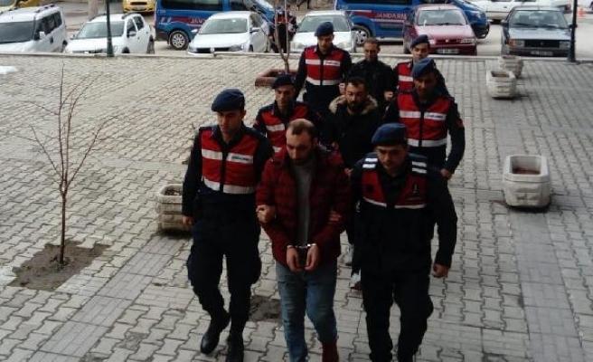 Eskişehir'de koyun hırsızlığına 2 tutuklama