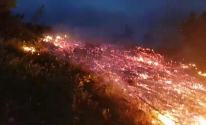 İnegöl'de orman yangını