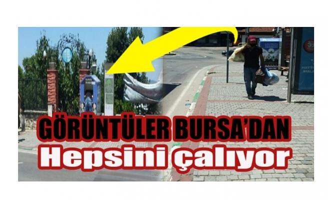 Bursa'da yardım kutusu faresi böyle görüntülendi