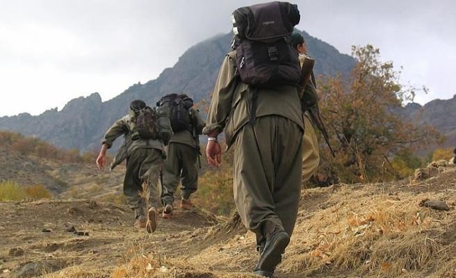 İçişleri Bakanlığı: 1 terörist teslim oldu