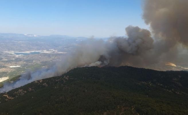 Aydın'da başlayarak Muğla'ya ulaşan orman yangını kontrol altına alındı