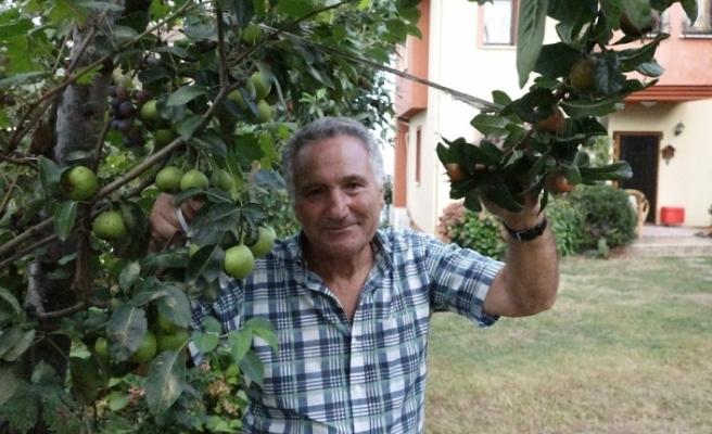 Ayva ağacında ayvadan başka her meyve var