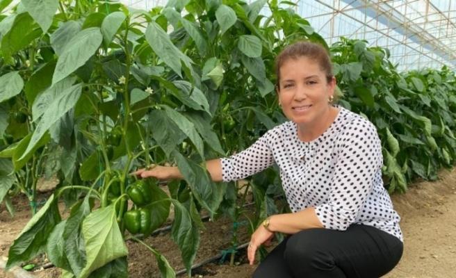 Ziraat mühendisi kadın çiftçi hem üretiyor hem kadın çiftçilere danışmanlık yapıyor