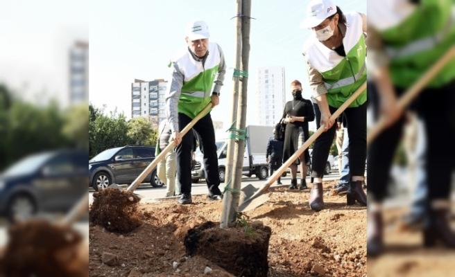 Mersin'de bir yılda 700 bin fidan dikilecek