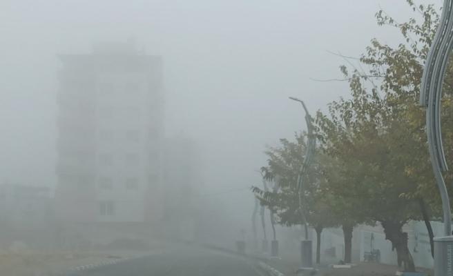 Gercüş'te yoğun sis sürücülere zor anlar yaşattı