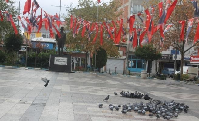 Manyas'ta meydanlar kuşlara kaldı