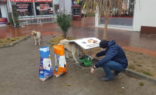 Sokak hayvanları için beslenme üniteleri oluşturuldu