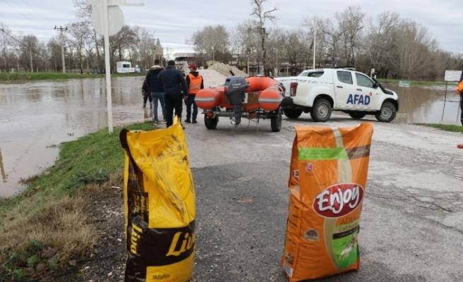 AFAD ekipleri sokak hayvanlarını unutmadı