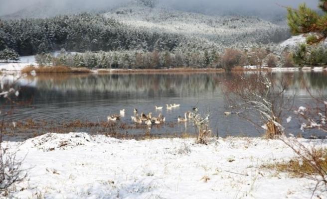 Mevsimin ilk karı yağdı Gölcük'te kartpostallık görüntüler oluştu