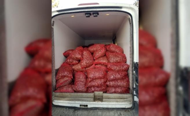 Kaçak avlanan 30 bin midye imha edildi