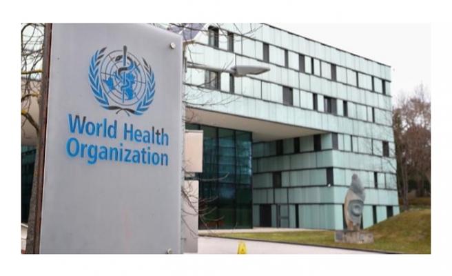 DSÖ'nün raporu basına sızdı: İşte virüsün kaynağı