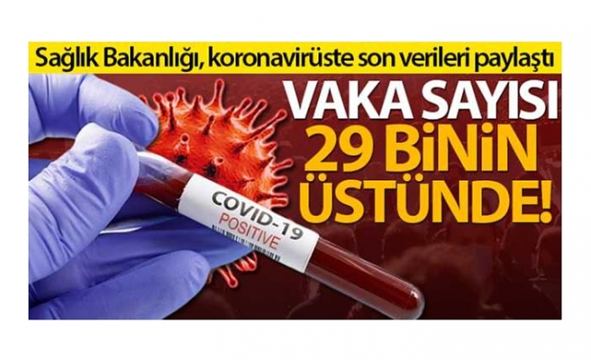 Türkiye'de son 24 saatte 29.081 koronavirüs vakası tespit edildi