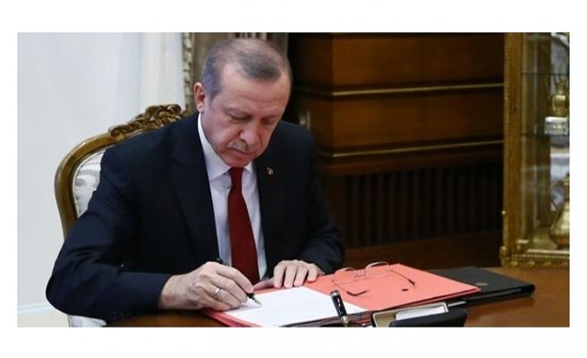 İnsan Hakları Eylem Planı'yla ilgili Cumhurbaşkanı genelgesi Resmi Gazete'de