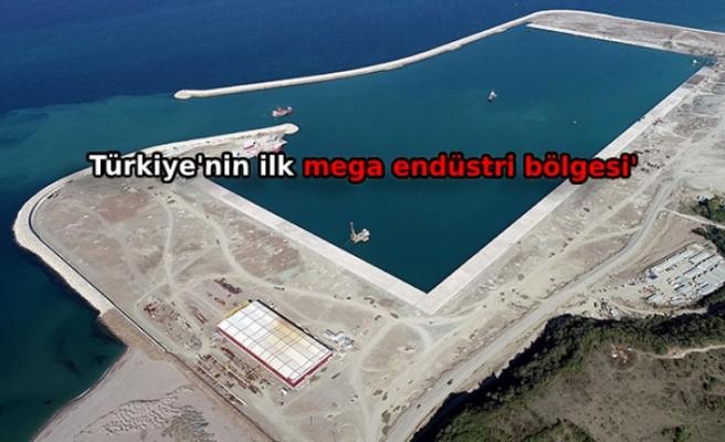 Türkiye'nin ilk mega endüstri bölgesinde '10 bin istihdam' hedefi