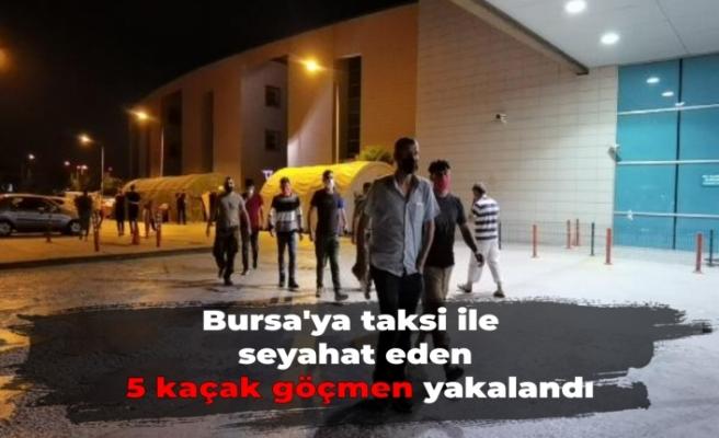 Bursa'ya taksi ile seyahat eden 5 kaçak göçmen yakalandı