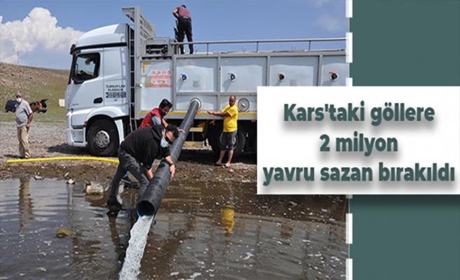 Kars'taki göllere 2 milyon yavru sazan bırakıldı