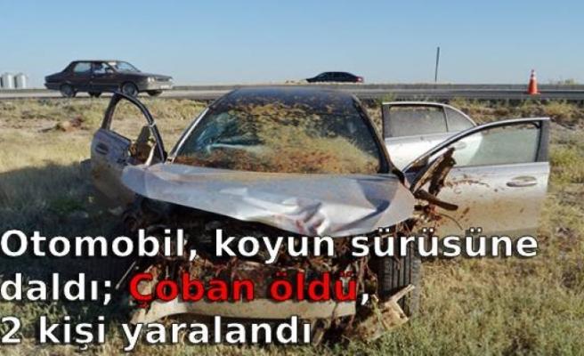 Otomobil, koyun sürüsüne daldı; Çoban öldü, 2 kişi yaralandı