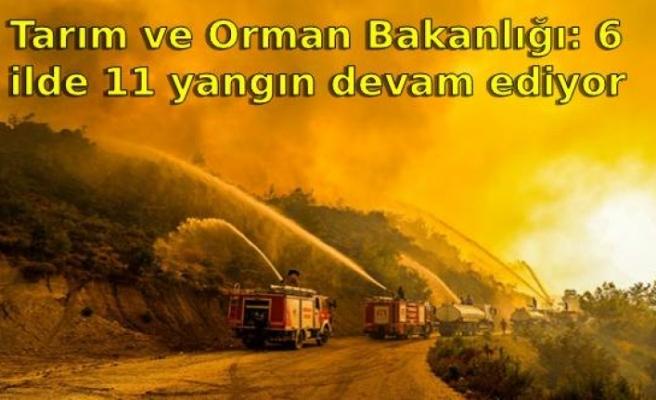Tarım ve Orman Bakanlığı: 6 ilde 11 yangın devam ediyor
