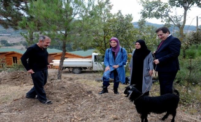 İnsanlık Köyü projesinde çalışmalar devam ediyor