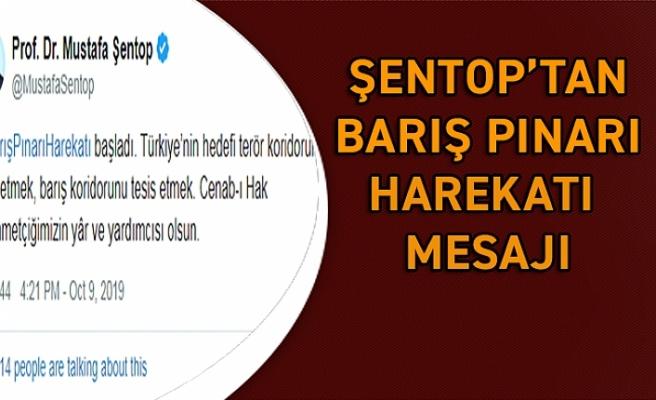 Şentop'tan 'Barış Pınarı Harekatı' mesajı