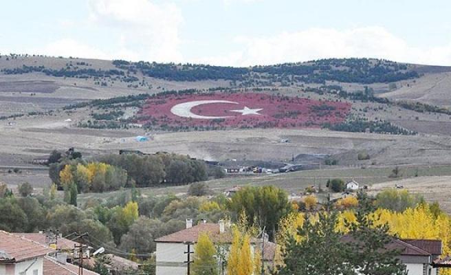 Dev Taştan Türk Bayrağı