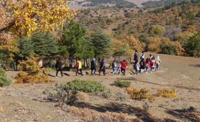 Beyşehir Gölü Milli Parkı sonbaharda doğa tutkunlarını hayran bırakıyor