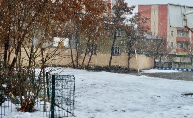 Ağrı'da aralıklarla etkisini sürdüren kar yağışı kenti beyaza bürüdü