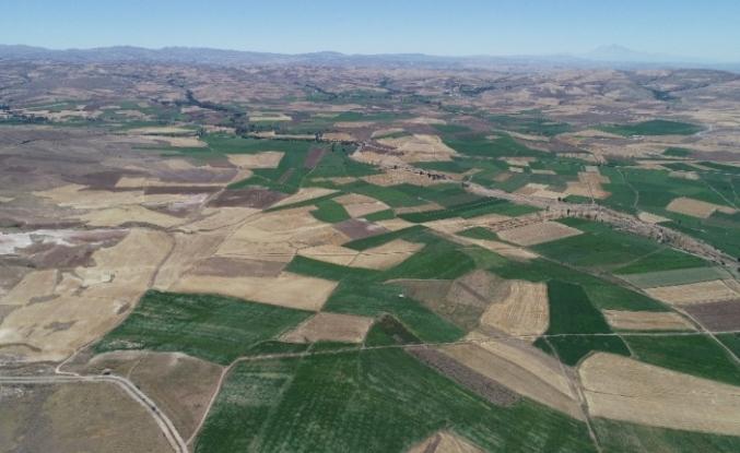 Altınyayla'da arazi toplulaştırma çalışmaları
