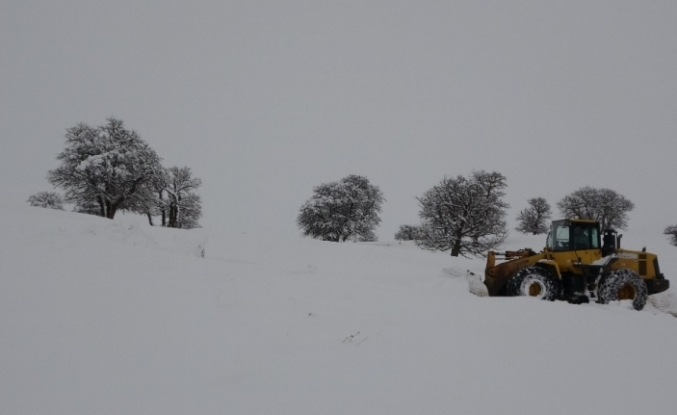 Muş'ta 114 köy yolu ulaşıma kapandı