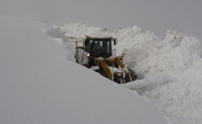 Muş'ta iş makinelerinin 5-6 metrelik karla mücadelesi