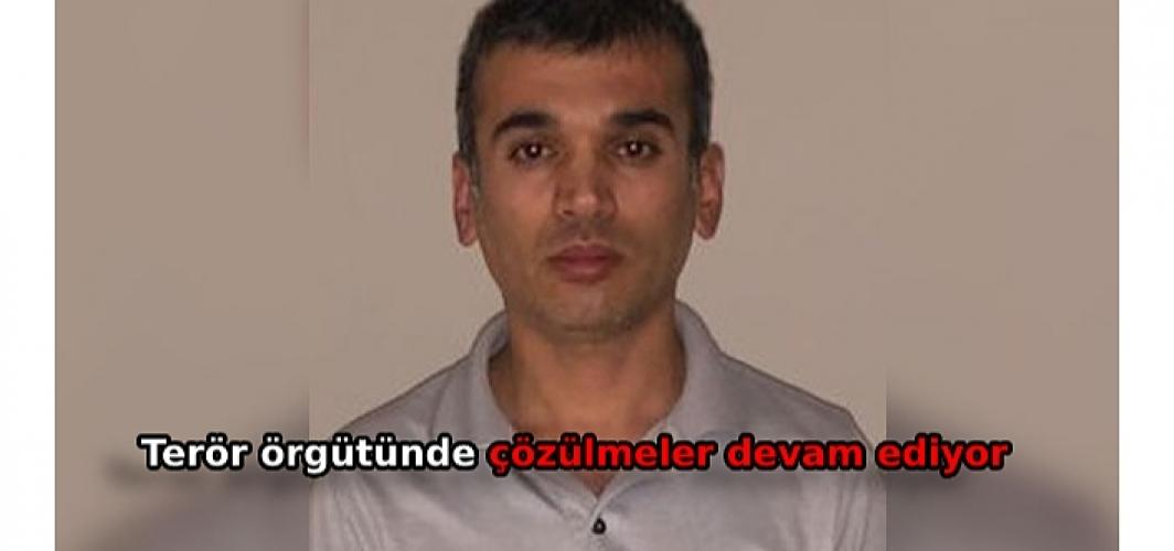 Yeşil kategoride aranan PKK'lı teslim oldu