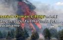 Atatürk Orman Çiftliği'ndeki yangın soruşturmasında...