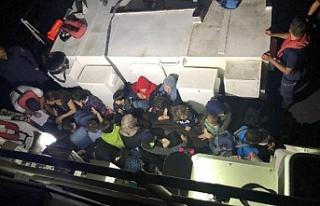 99 kaçak göçmen yakalandı