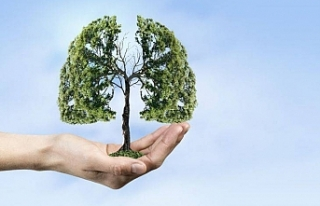 Doğanın ciğerleri yanıyor: hava kirleniyor