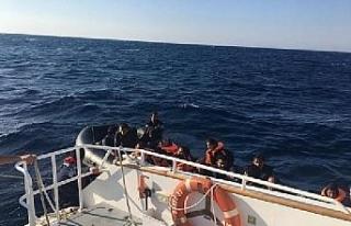 Edirne'de 66 kaçak göçmen yakalandı