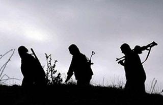 Silopi'de 4'ü kadın 6 PKK'lı terörist...